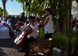 Violin&Chelo2.1
