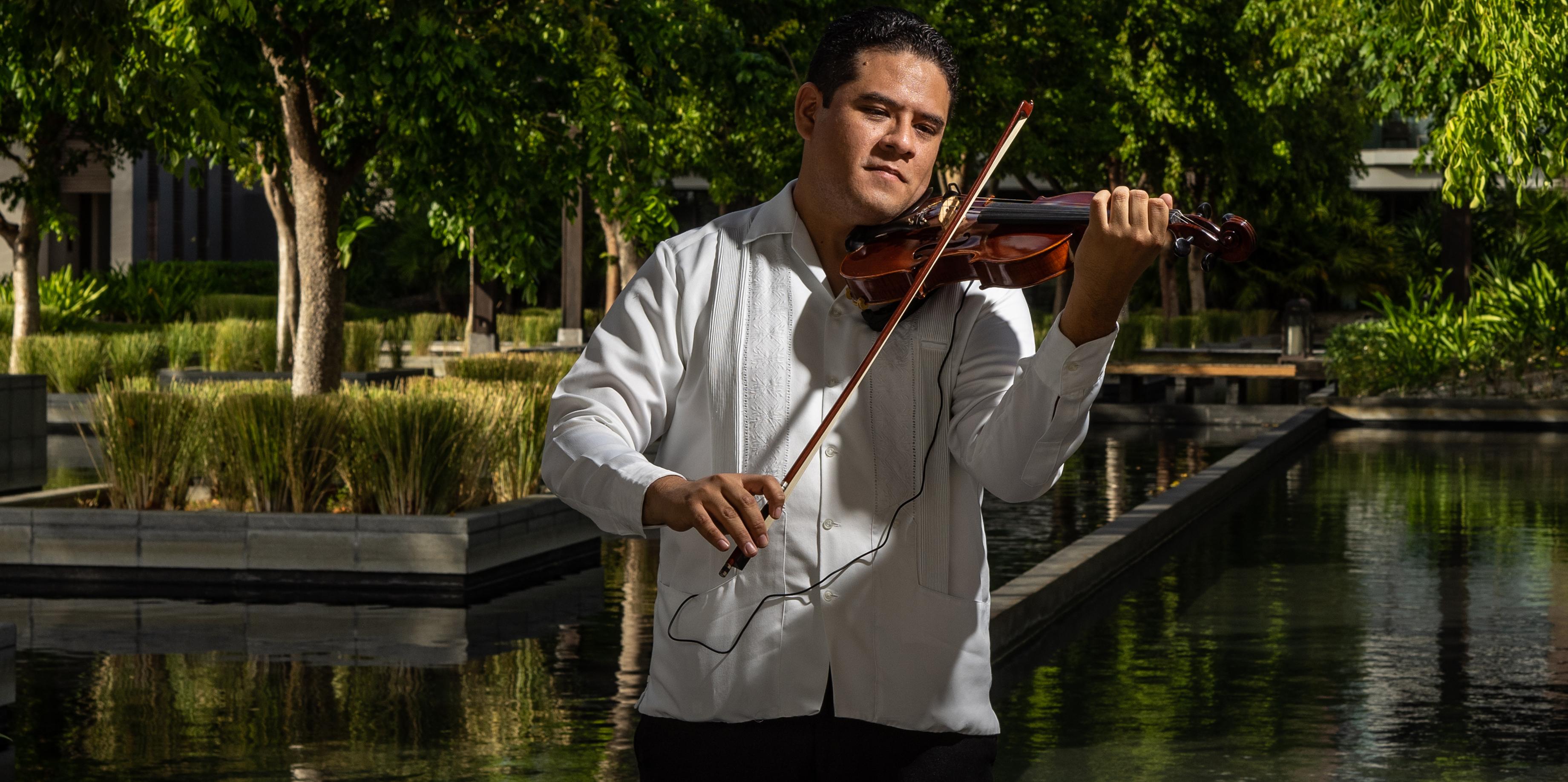 ViolinHorizontal